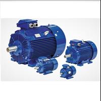 Jual Electric Motor