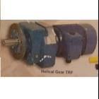 Helical Gear TRF 1