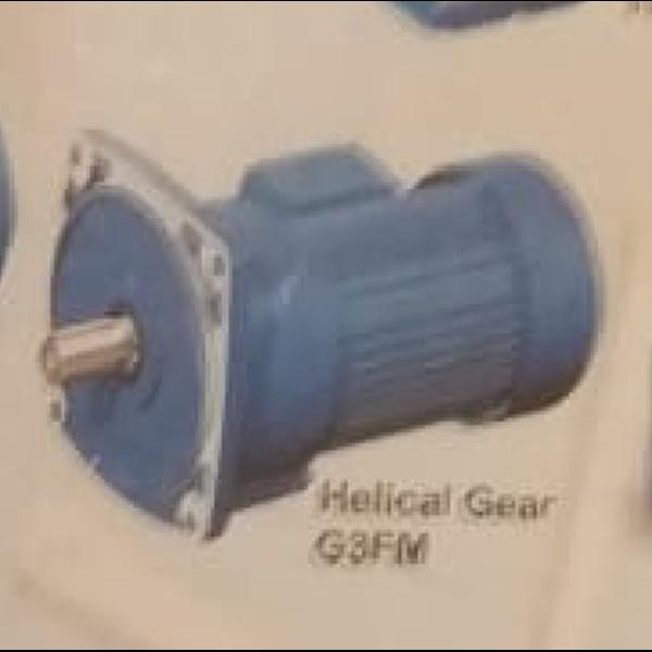 Helical Gear G3FM
