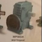 Worm Gear WPWDK 1