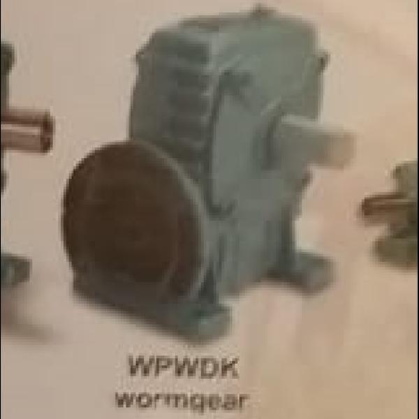 Worm Gear WPWDK