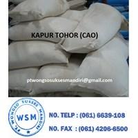 Kapur Tohor