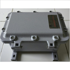 Box Panel Explosion Proof Warom BXT Series 1