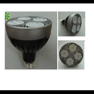 Dari Lampu PAR 30 35W Halospot LED 0