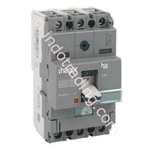 Mccb Hager 2 Phase (2Pole) 18Ka Rating 16A-80A Type HDA015P-HDA079P