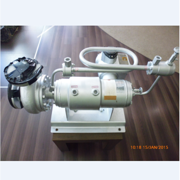 Pompa Cooled Motor Circulation