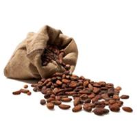 Jual Cokelat Biji Kakao
