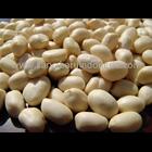 Supplier Kacang Tanah Kupas - Distributor Kacang Tanah Kupas