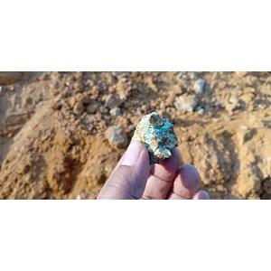 Survei Pemetaan Logam Emas By PT Citrakansa Emeralindo