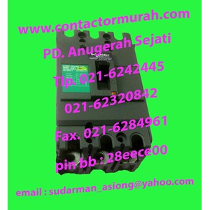 MCCB Schneider EZC100F3060