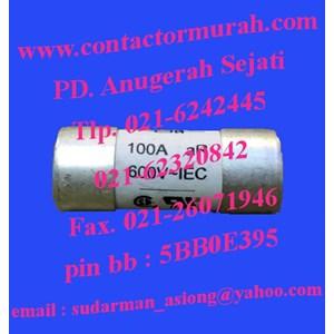 Eaton tipe FWP-100A22F1 fuse