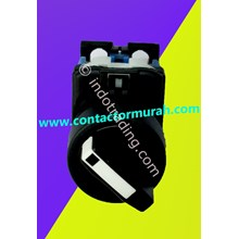 Selector Switch Fuji Type Ar22pr-2