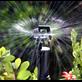 Sprinkler Rotor Spray™