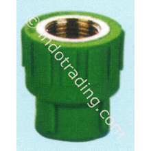 PPR Pipe Fitting Female Coupling Asialing