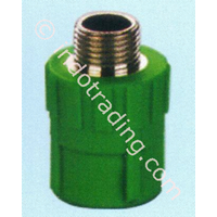 Pipe Ppr Fitting Male Coupling Asialing