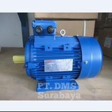 Elektro Motor 3 Phase