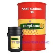 Oli Shell Gadinia S3 30 ( Oli Diesel Marine )