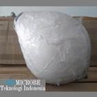 Pelampung Moorings Polyform CC-2 5