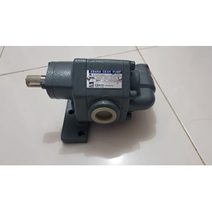 Gear Pump Ebara GPF 25 - Ready Stock Gear Pump Ebara GPF 25
