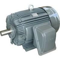 Beli Motor Induksi - Agen Motor elektrik TECO 4