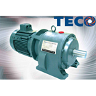 Induction Motor - TECO Electric Motor Distributor 2