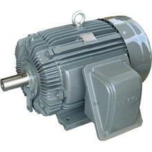 Motor Induksi - Distributor Electric Motor TECO