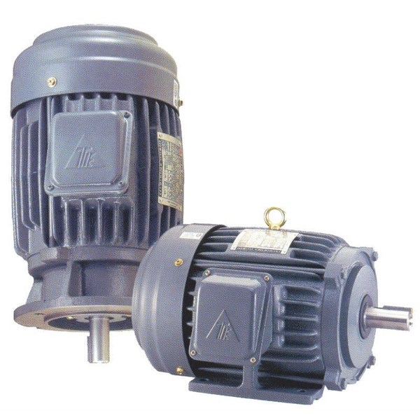 Induction Motor - TECO Electric Motor Distributor