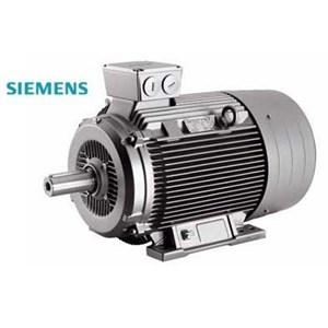 Motor Induksi Siemens - Distributor Motor Siemens