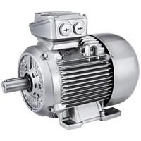 Motor Induksi Siemens - Agen Motor elektric Siemens