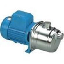 Pompa Centrifugal APP - Distributor APP Pump di Ja