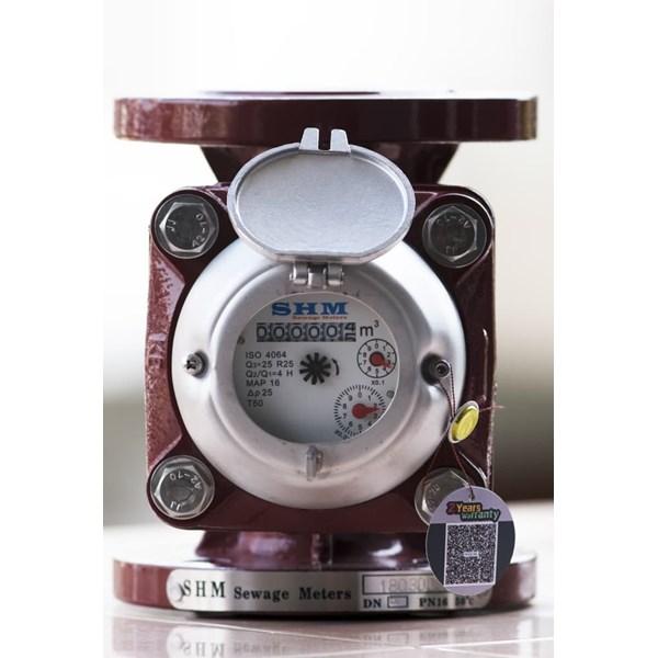 """Agen Flow Meter SHM 2 inch - Agen Flowmeter SHM 2"""" (DN 50)"""