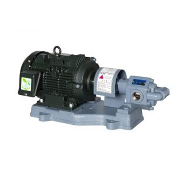 Jual Gear Pump EBARA GPE - Distributor Gear Pump Ebara Model 25 GPE