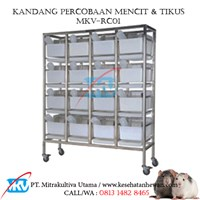 rat experiment cage