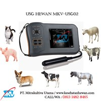 Animal Ultrasonografi