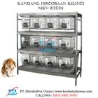 Kandang Percobaan Kelinci MKV-RTC04 1