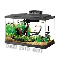 Alat Peraga Aquarium