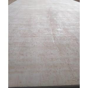Triplek / Kayu Lapis / Ppan / Plywood 8Mm Albasia