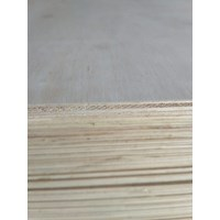 Triplek / Kayu Lapis / Papan / Plywood Albasia 9Mm 1