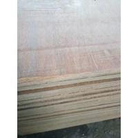 Triplek / Kayu Lapis / Papan / Plywood 12Mm Palem 1