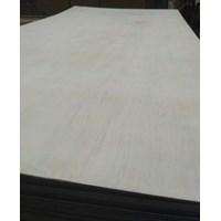 Jual Triplek / Kayu Lapis / Papan / Plywood 4Mm 3X7 2
