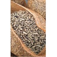 Jual Kacang Tanah Berkualitas