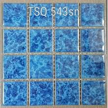 Mosaic Swimming Pool TSQ 543 SN