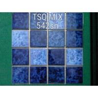 Jual Mosaic Kolam Renang TSQ MIX 542