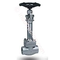 Forged Steel Gate Valve 1