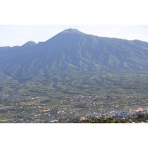 View Gunung Dari Villa Hanyomi Batu