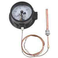 Jual Bimetallic Thermometer  (Electrical Contact Capillary Thermometer) 2