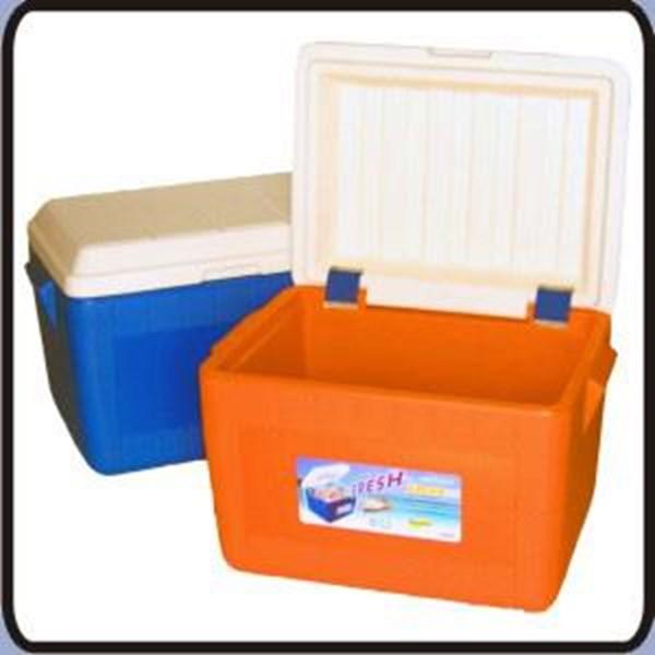 COOL BOX DELTA 60 litres