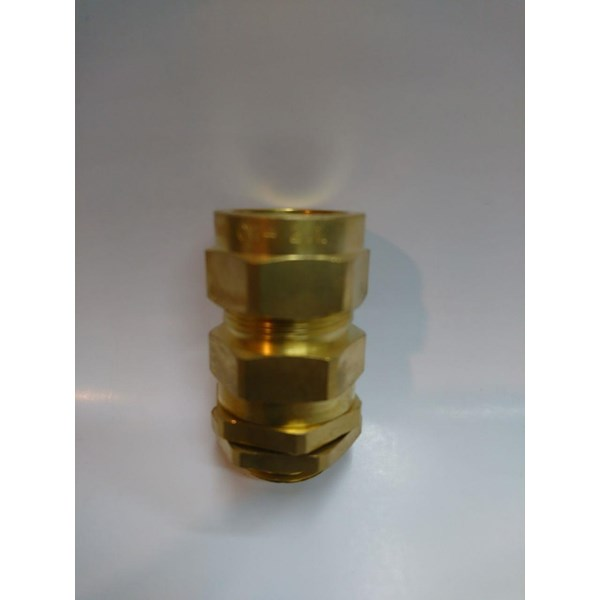 Cable Gland Industrial Armoured CW 20 (S L)