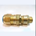 Cable Gland CMP Brass E1W M20 1