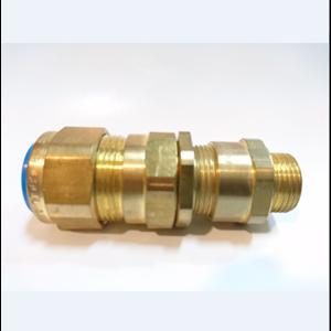 Cable Gland CMP Brass E1W M20